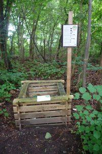 Stoffabbau im Wald